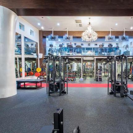 anatomy gym